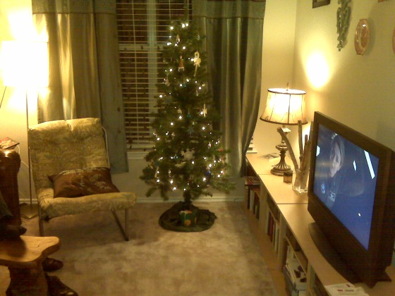 Our pretty tree with the matching blue ornaments!