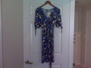 My $6 Dress!