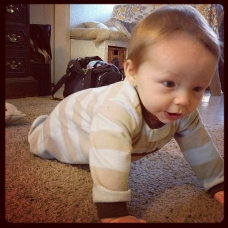 AJ determined crawling