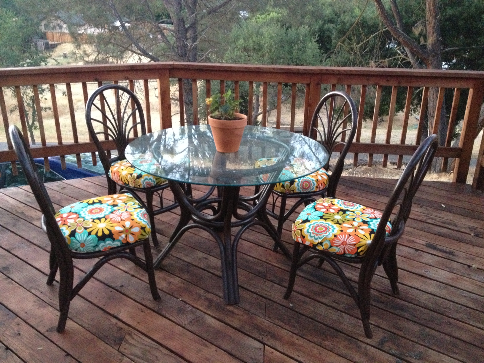 Deck Furniture After