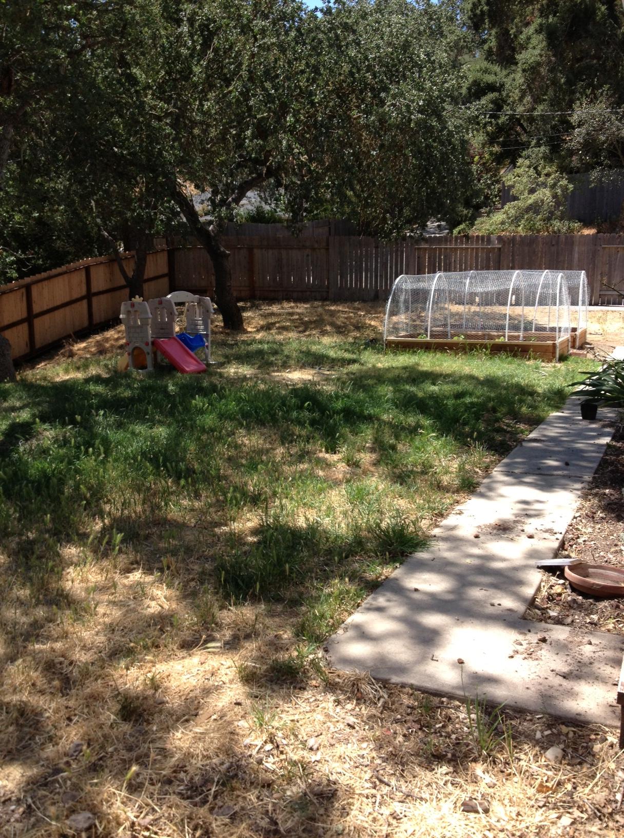 Valle Kid Side of yard